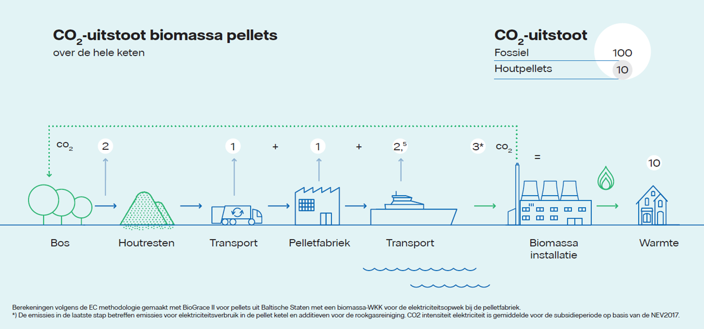 Infographic over de Co2-uitstoot biomassa pellets | Vattenfall biomassacentrale